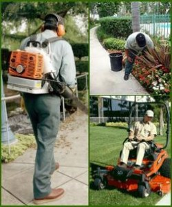 Big M Services team mowing and leaf blowing lawn